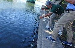 水質調査の写真